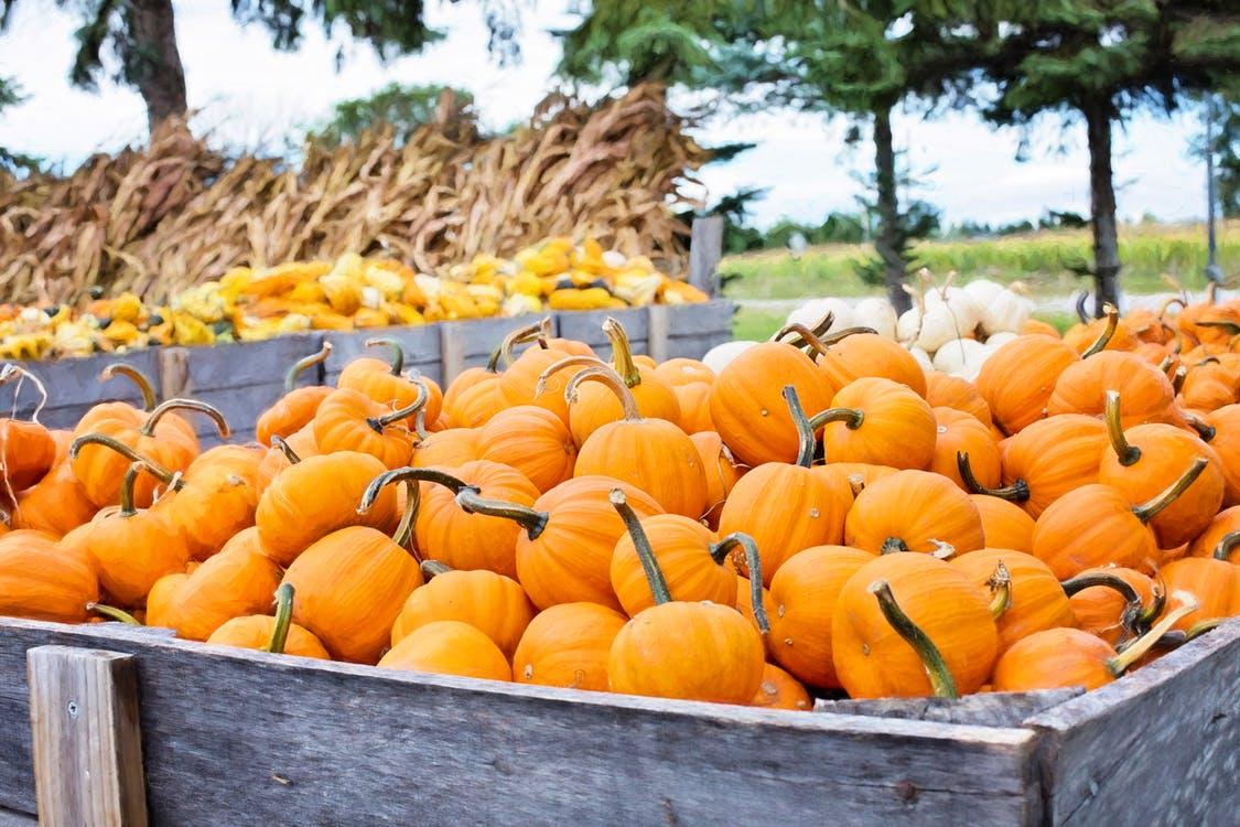 Recepten voor de herfst
